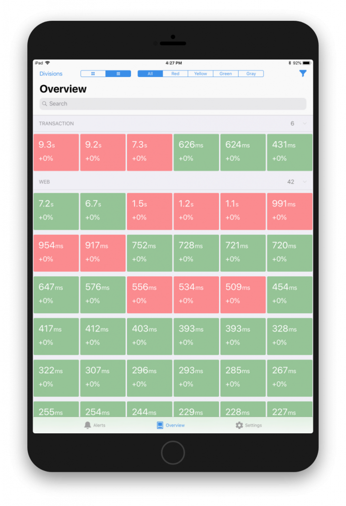 synthetic overview displayed on iPad
