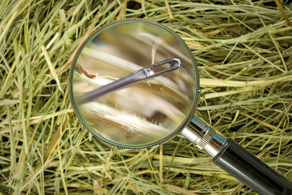 Searching for a needle in a haystack